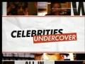 Celebrities Undercover